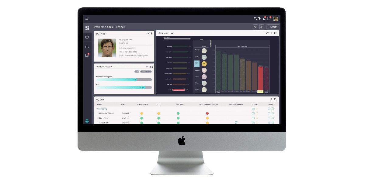 RippleWorx Inc. - Wie sieht die Software aus